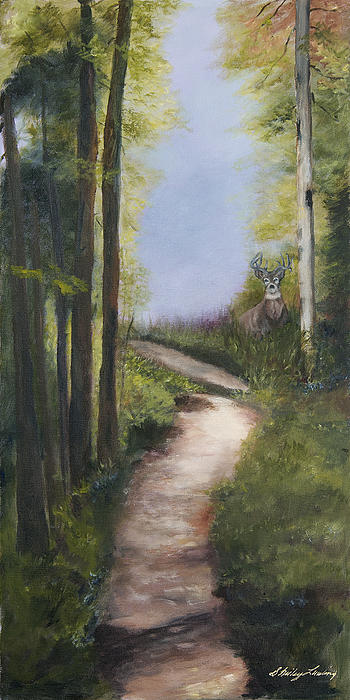 Deer Painting - Buckeye by Shirley Lawing