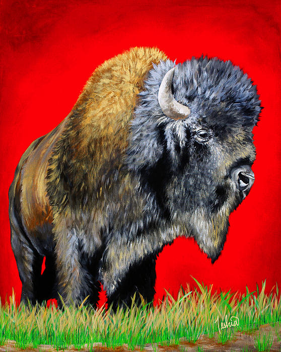 Buffalo Painting - Buffalo Warrior by Teshia Art