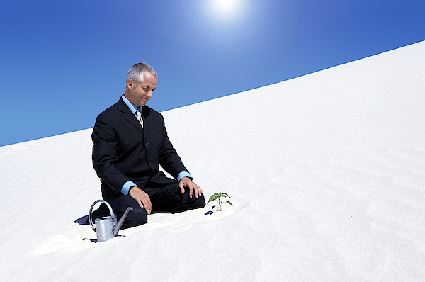 Businessman With A Watering Can Watching A Plant Planted In The Sand In A Desert Photograph by John Cumming
