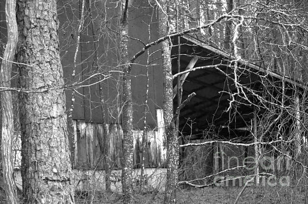 Shed Photograph - Camouflage Black And White Ver 1 by Affini Woodley