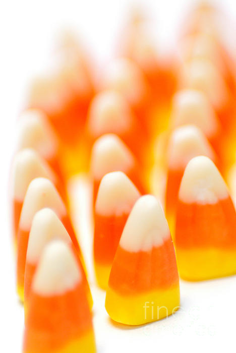 Align Photograph - Candy Corn Army by Amy Cicconi