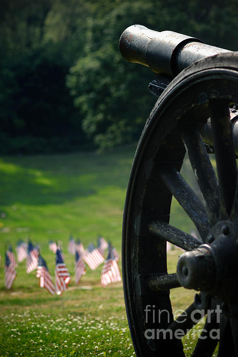 American Flag Photograph - Cannon Memorial With American Flags by Amy Cicconi