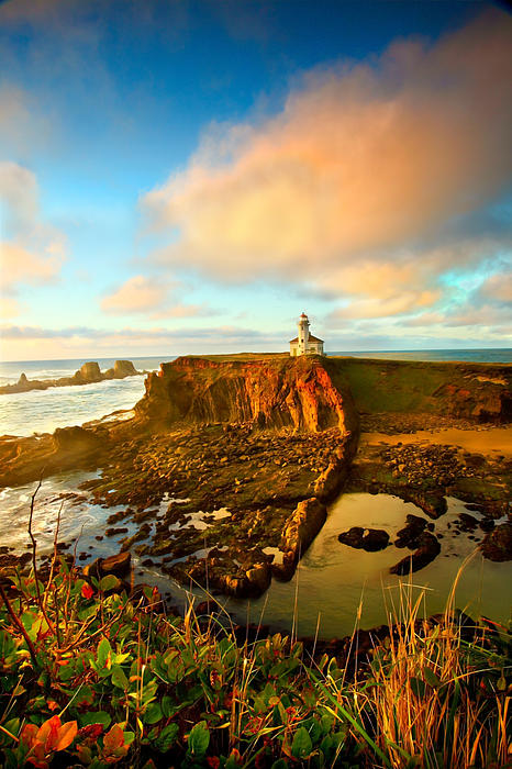 Oregon Photograph - Cape Arrago Lighthouse1 by Joe Klune