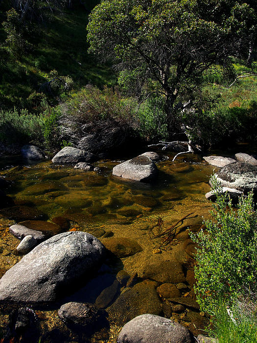 Stream Photograph - Captured Clarity by Kaleidoscopik Photography