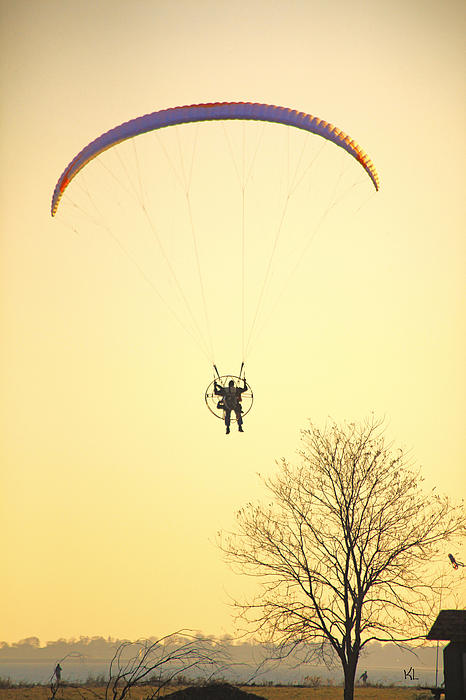 Paragliding Photograph - Careful Of That Tree by Karol Livote