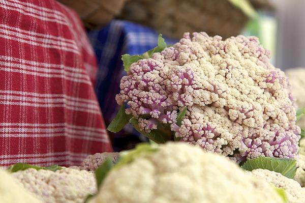 Cauliflower Photograph - Cauliflower by Terry Horstman
