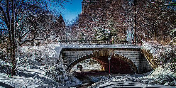 Central Park Photograph - Central Park After Nemo by Chris Lord