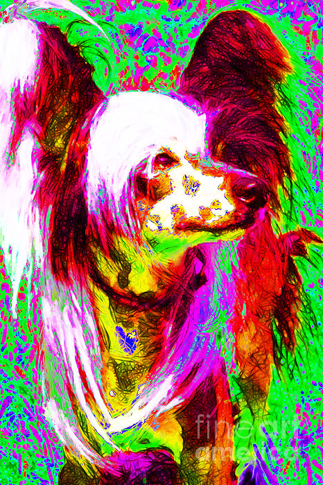 Animal Photograph - Chinese Crested Dog 20130125v2 by Wingsdomain Art and Photography