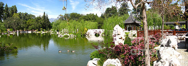 Digital Photograph - Chinese Gardens by Bedros Awak