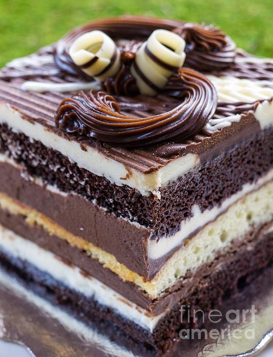 Cake Photograph - Chocolate Temptation by Edward Fielding