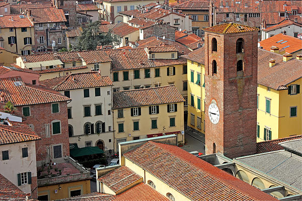 Sight Photograph - City View Of Lucca With The Clock Tower by Kiril Stanchev