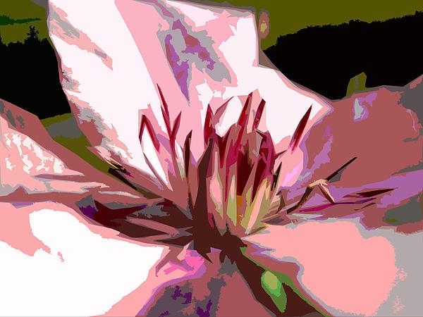 Clematis Digital Art - Clematis by Bitten Kari