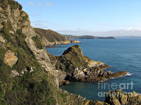Yellow Photograph - Cliffs In Cornwall Near Mevagissey by Kiril Stanchev