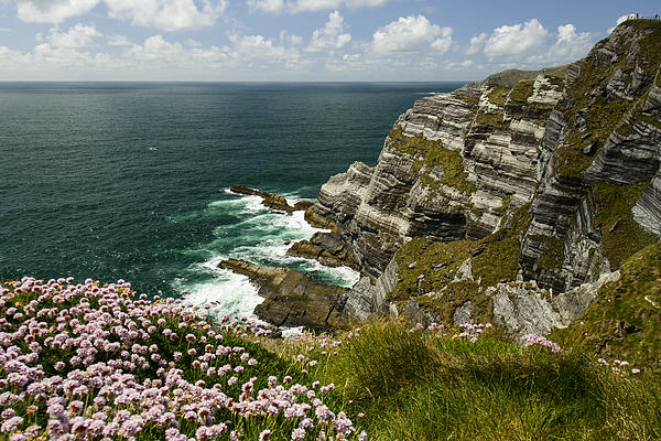 Rocks Photograph - Cliffs Of Kerry Ireland by Dick Wood