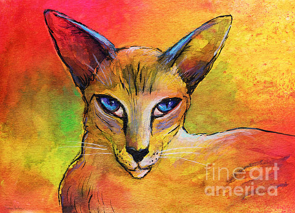 Oriental Shorthair Cat Painting - Colorful Oriental Shorthair Cat Painting by Svetlana Novikova