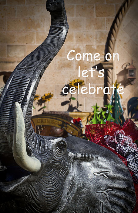 Celebration Photograph - Come On Lets Celebrate by Kathy Clark