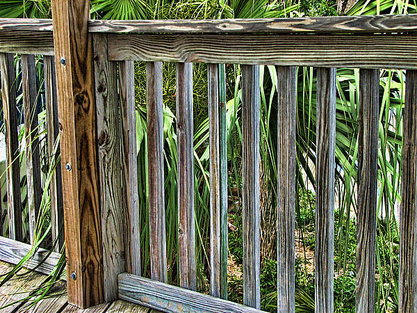 Fence Photograph - Containment by Wendy J St Christopher