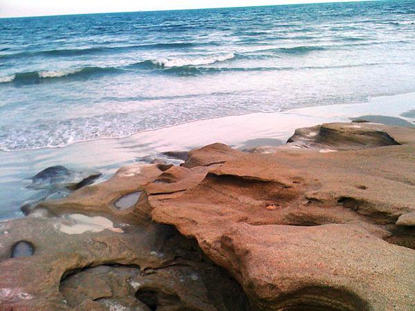 Beach Photograph - Coquina Blue by Julie Wilcox