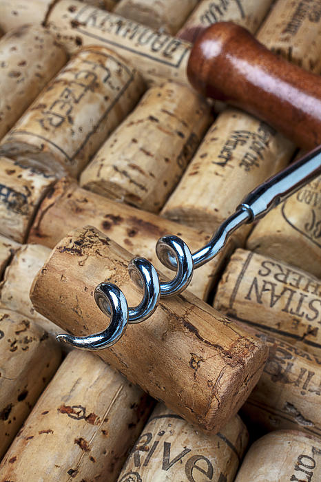 Wine Photograph - Corkscrew On Corks by Garry Gay