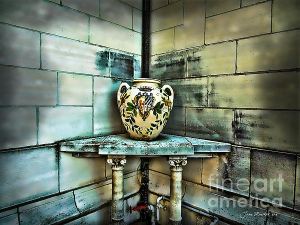Still Life Photograph - Corner Vase by Joan  Minchak