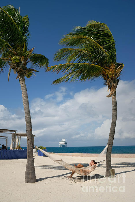 Bahamas Photograph - Couple In Hammock On Beach by Amy Cicconi