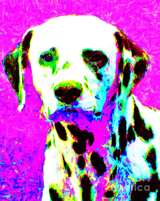 Animal Photograph - Dalmation Dog 20130125v1 by Wingsdomain Art and Photography