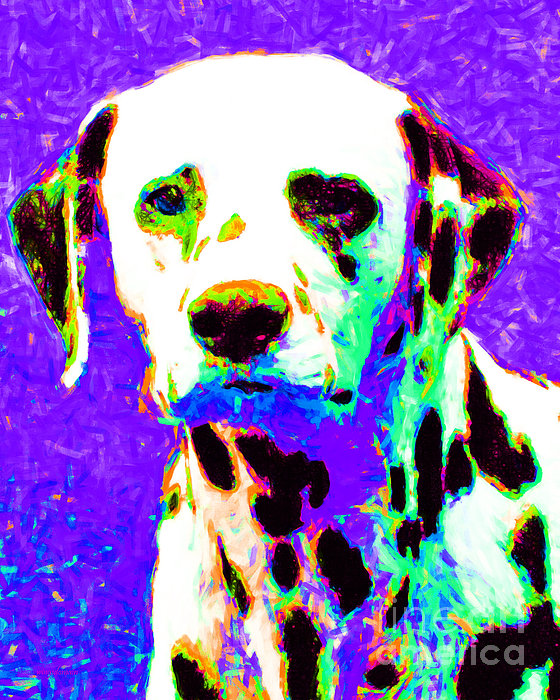 Animal Photograph - Dalmation Dog 20130125v4 by Wingsdomain Art and Photography