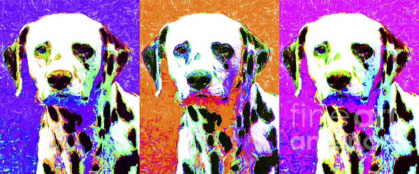 Animal Photograph - Dalmation Dog Three 20130125 by Wingsdomain Art and Photography