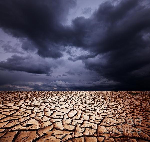 Dark Photograph - Dark Dead Valley by Boon Mee