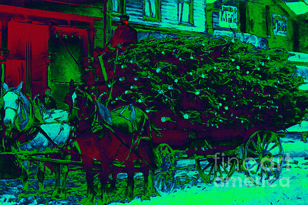 Christmas Photograph - Delivering The Christmas Trees - 20130208 by Wingsdomain Art and Photography