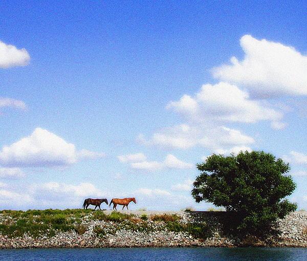 Delta Photograph - Delta Range by Ari Jacobs
