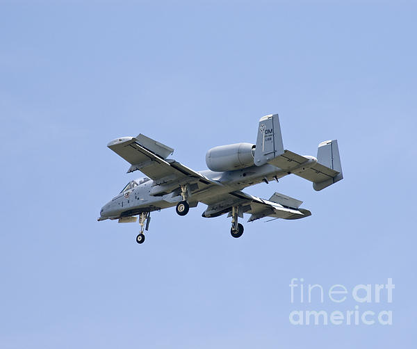 A-10 Photograph - Dirty Hawg by Tim Mulina