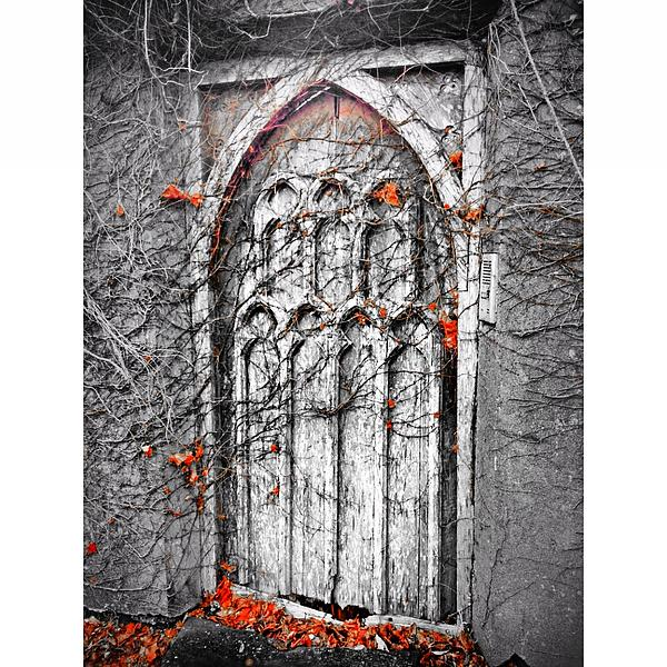 Framed Prints Photograph - Doorway In Cork by Maeve O Connell