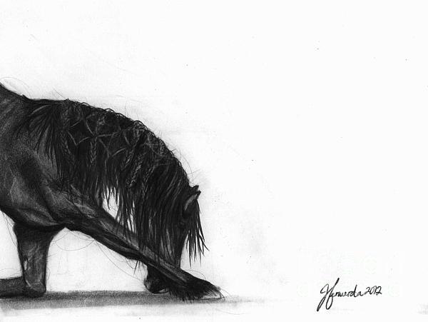 Horse Drawing - Dreamer by J Ferwerda