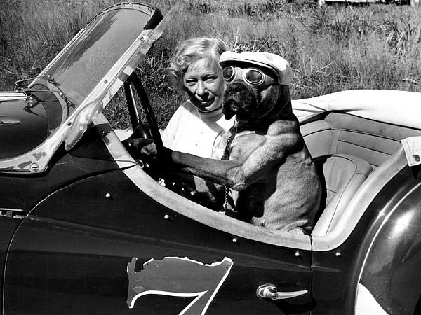 Retro Images Archive Photograph - Driving Lessons by Retro Images Archive