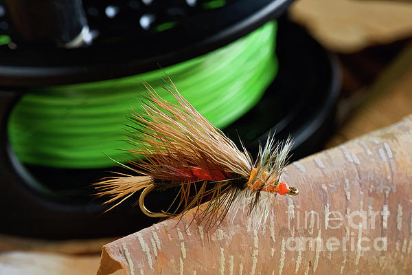 Painting Photograph - Dry Fly - D003399b by Daniel Dempster