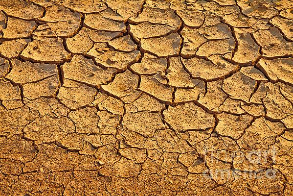 Farm Photograph - Dry Land Art by Boon Mee