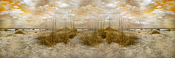Coast Photograph - Dunes by Betsy Knapp
