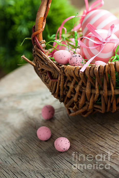 April Photograph - Easter Concept by Mythja  Photography