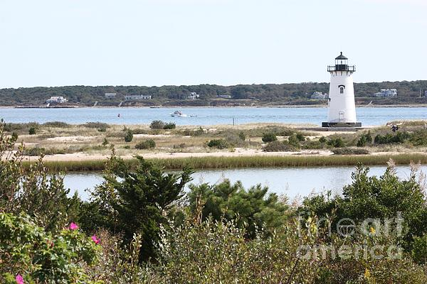 Edgartown Photograph - Edgartown Lighthouse With Wildflowers by Carol Groenen