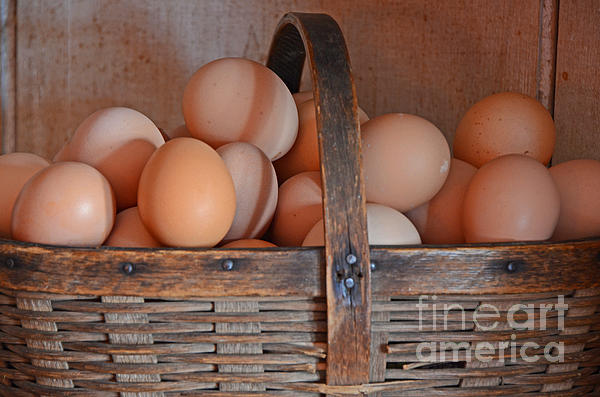 Still Life Photograph - Egg Basket by Mary Carol Story