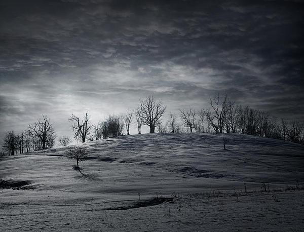 Winter Photograph - Elsewhere by Akos Kozari
