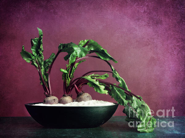 Beets Photograph - Embedded by Priska Wettstein