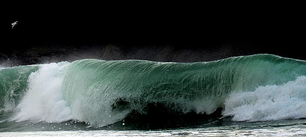Wave Photograph - Emerald Wave by Barbara Walsh
