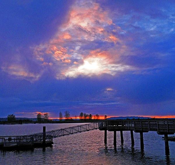 Washington State Photograph - Evening Gift by Seth Shotwell