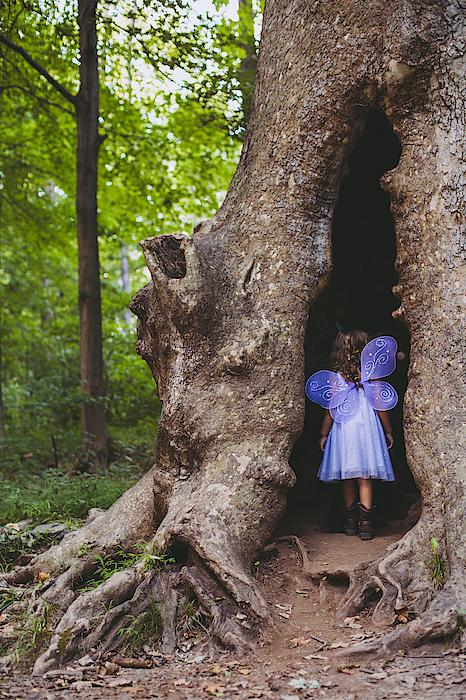Fairy House Photograph by Vanessa Lassin Photography