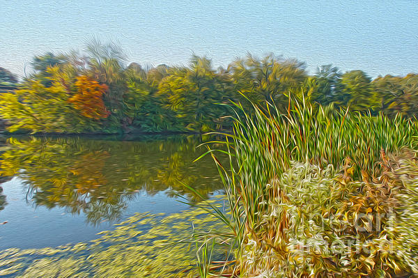Fall Photograph - Fall By The River by Nur Roy
