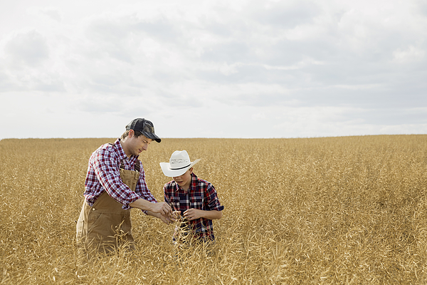 Father And Son Checking Wheat Crop Photograph by Hero Images