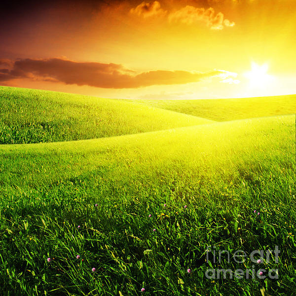 And Photograph - Field Of Grass And Sunset by Boon Mee