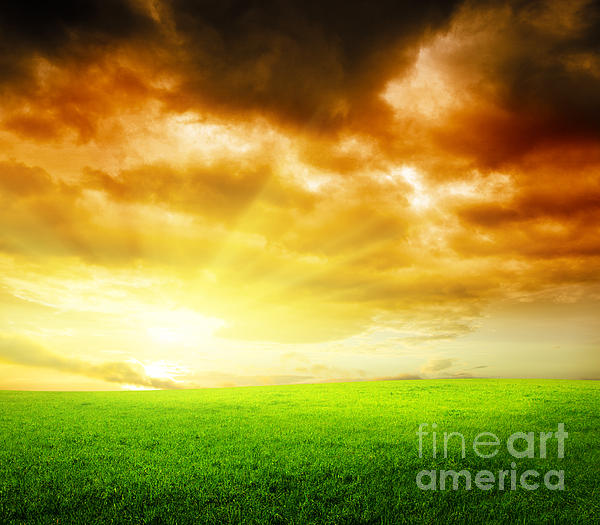 Farm Photograph - Field Of Grass by Boon Mee